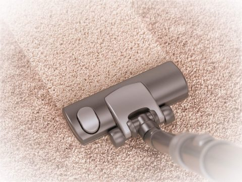 carpet cleaner minneapolis